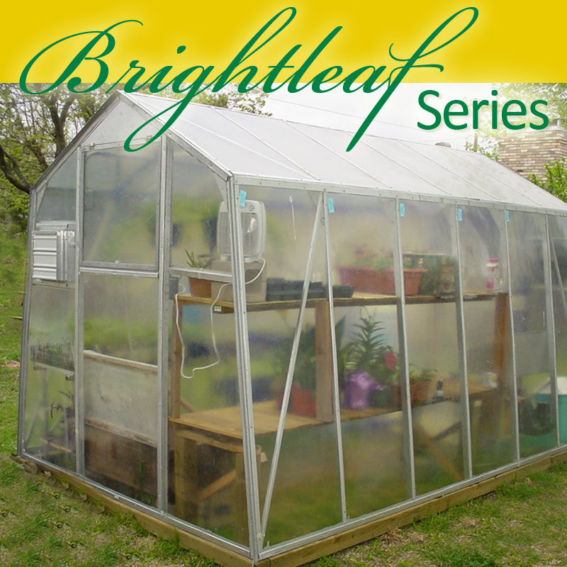 Brightleaf Series 8' wide Greenhouse