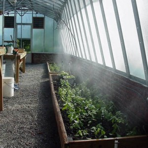 Greenhouse Misting, Watering & Humidification